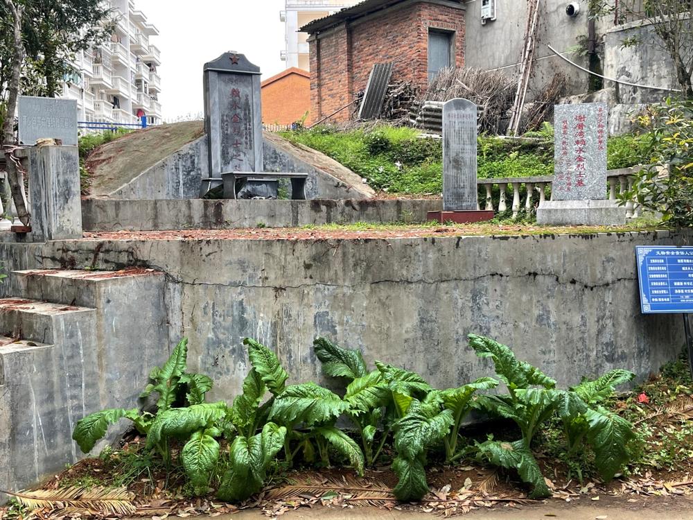 部分县级以下烈士纪念设施管护堪忧:墓前种蔬菜、碑文刻错字……