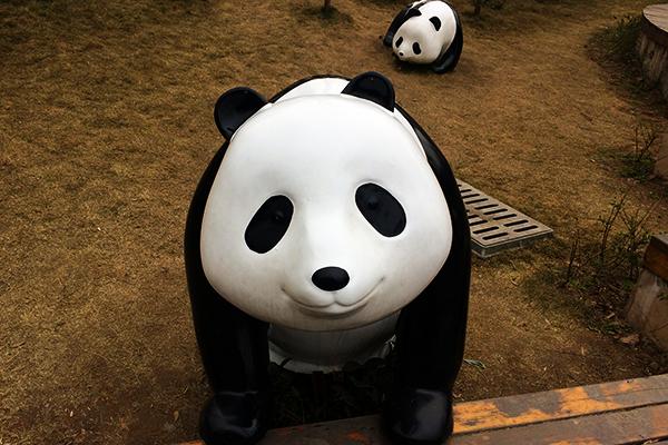 雅安家家户户养熊猫吗?