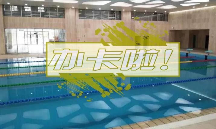 市体育中心的恒温游泳池可以办卡啦!