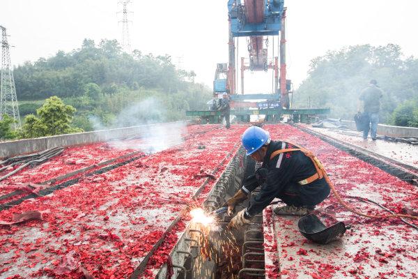 【重磅】定了!成雅铁路11月30日建成投运??!