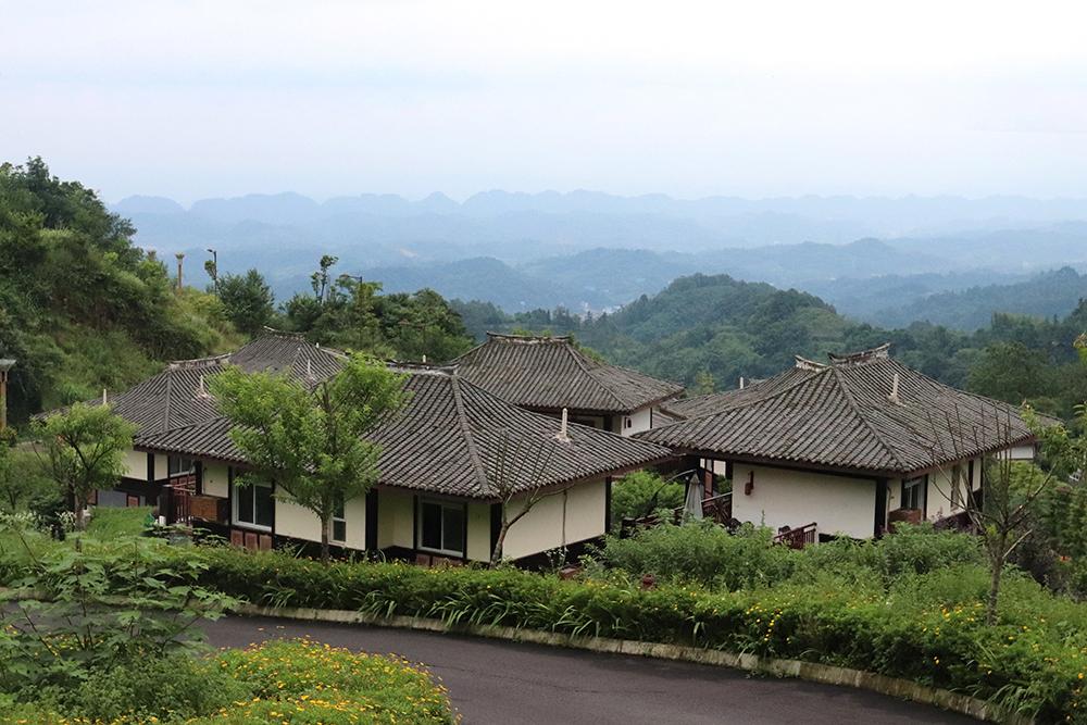 """最新消息︰雅安26個村獲得了""""國字號""""頭餃(xian),有沒有你們村?"""