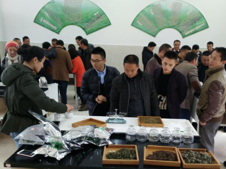 人才培训 为雅茶产业发展增加实力