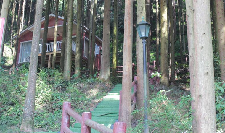 加快林业产业发展 拓宽生态富民之路