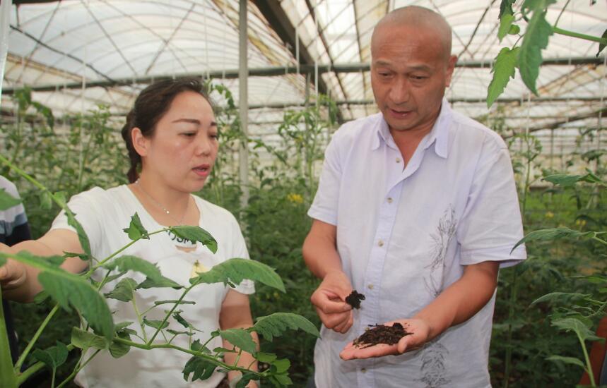 点对点帮扶  带动贫困村种植业发展