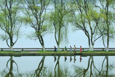 为雅安加快建设绿色发展示范市  提供更坚强水利保障