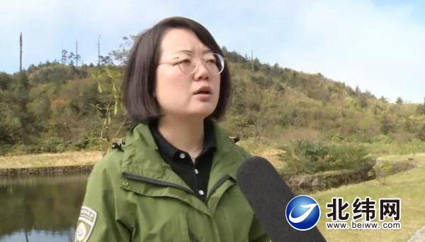 捷报!大相岭丛林古道被评为2019世界最美丛林古道!