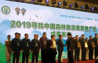 喜报!大相岭森林古道被评为2019全国最美森林古道!