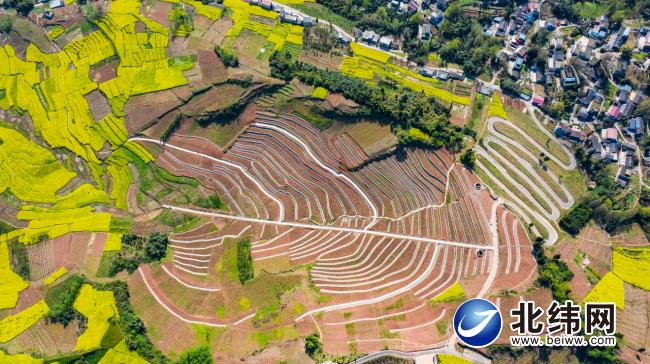描绘农业农村发展新蓝图