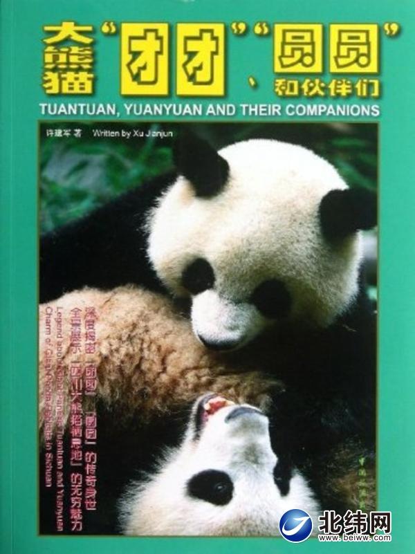雅安大熊猫基地_讲述赠台大熊猫的传奇故事-北纬网(雅安新闻网)
