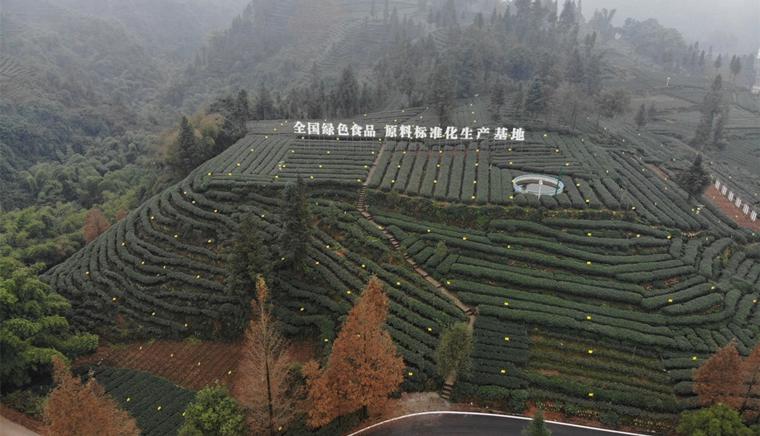 """建设高标准农田  构建现代农业""""5+3""""产业体系"""
