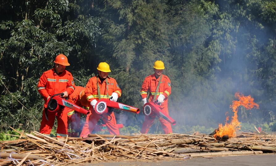 协同作战  提高森林火灾应对能力